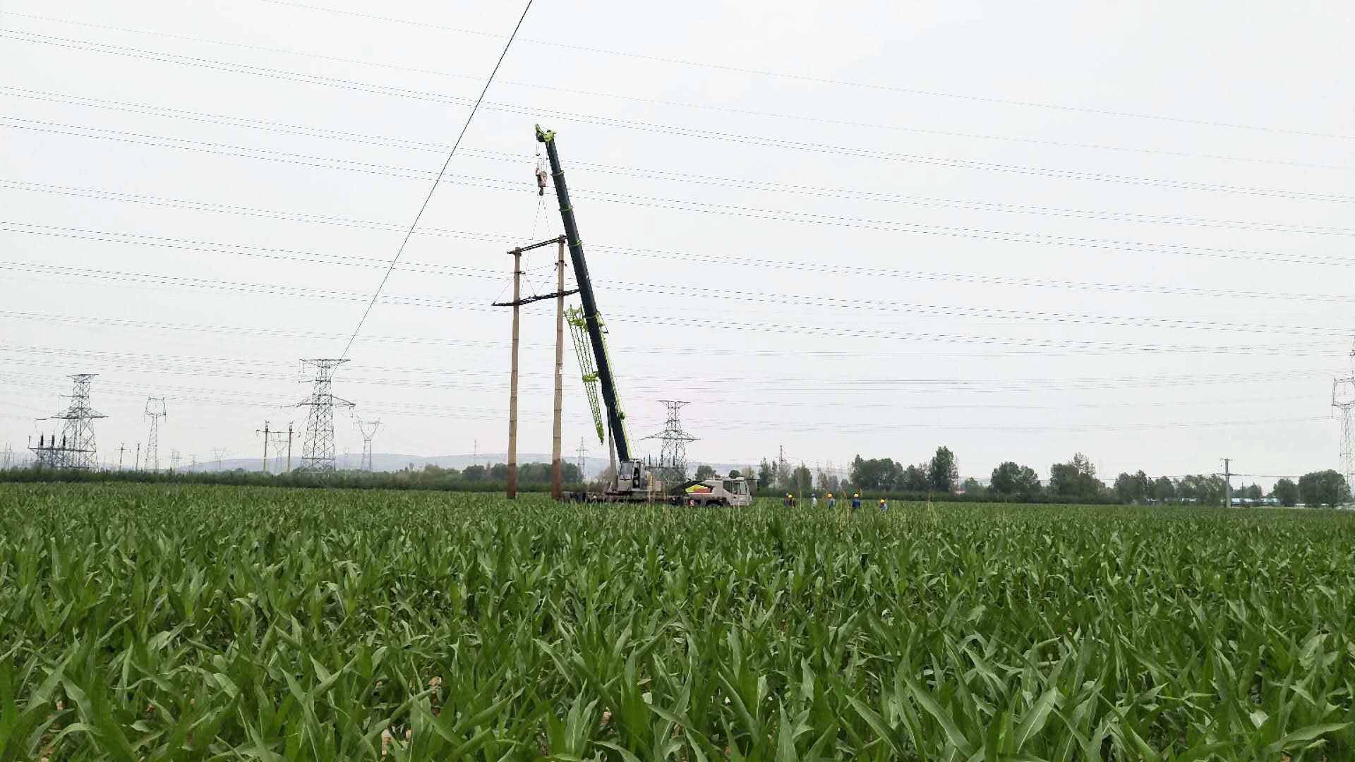 电网七分公司